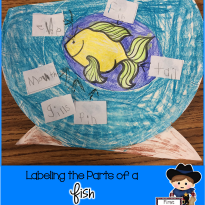 Monday Motivation:  Fishing for a Freebie!