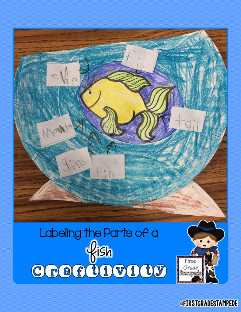 http://www.teacherspayteachers.com/Product/Labeling-the-Parts-of-a-Fish-FREEBIE-1799641
